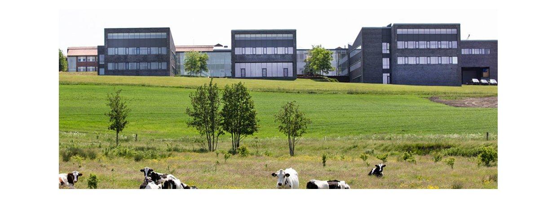 Kryta udvider med salgskontor i Århus